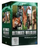 Amazon.de: Ultimate Wildlife Edition – Wildtiere an Land (BBC) [5 DVDs] für 6,97€ + VSK