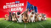 MediaMarkt.de: Das große Euro Osterhasen rasen vom 21.03. – 26.03.16