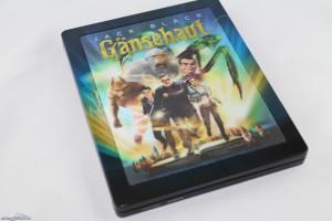 Gänsehaut-DE-MM-3D_byGaNjA-04