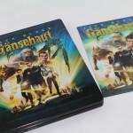 Gänsehaut-DE-MM-3D_byGaNjA-12