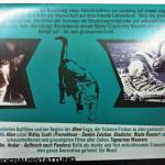 Alien_Amazon_Exklusiv_by_fkklol-08