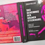 Das-Geheimnis-gruenen-Stecknadel_by_fkklol-08