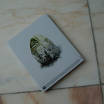 Alien-Covenant-Zusatzfotos_bySascha74-29