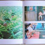 Kikujiros_Sommer_Mediabook_13