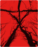 Zavvi.com: 2 für 15 Pfund / 17 EUR z.B. (The) Blair Witch Project Steelbook [Blu-ray]