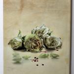 Elizabeth-Harvest-Mediabook-05