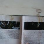 ChernobylMediabook_bySascha74-23
