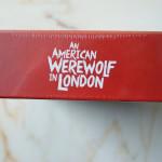 An-American-Werewolf_bySascha74-03