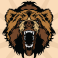 Profilbild von AK Bear